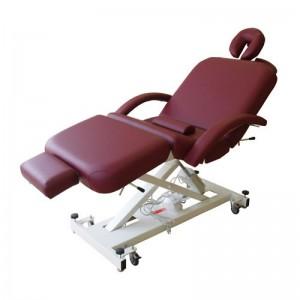 Lierre-Electric-Massage-Tables-Pro-II-tables-de-massage