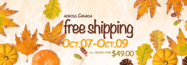 FREE SHIPPING over 49$ – just 3 days!