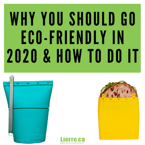 Why You Should Go Eco-Friendly in 2020 and How to Do It